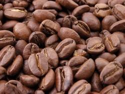 Kaffee – ein Getränk geht um die Welt