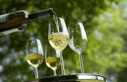 Trockene Weine werden immer beliebter