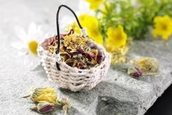 Aktueller Trend: essbare Blüten