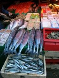 Fischverband kritisiert Einkaufsratgeber von Greenpeace