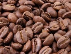 Kaffee Campus der Deutschen Röstergilde