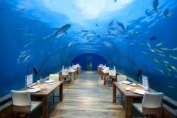 Neues Sieben-Gänge-Menü im Ithaa Unterwasser Restaurant
