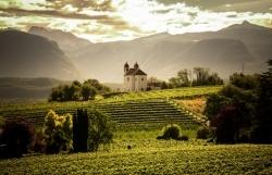 Spatium Pinot Blanc 2014:Weißburgunder-Messe in Südtirol
