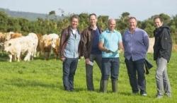Beef-Tour durch Irland: Deutsche Spitzenköche gingen auf Reise