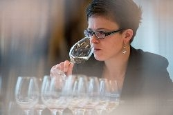 DWI Sommelier-Cup 2014: Weinexperten messen sich