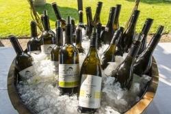 """Weißburgunder-Event: """"Spatium Pinot Blanc 2016"""" geht erfolgreich zu Ende"""