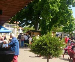 Mit Unterhaltung: Weinland Königsbach-Neustadt startet in Federweißer-Saison