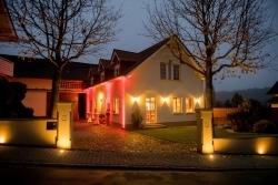 Rheinhessen: Tastetival bietet 17 Genuss-Events