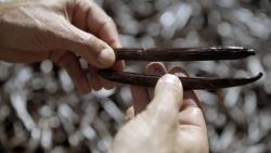 Reportage: ZDF berichtet über die Vanilleproduktion