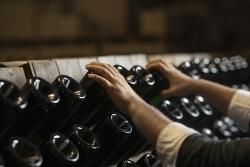 Analyse: Trockene Weine liegen im Trend