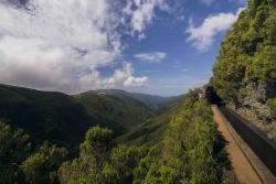 Genussevent: Das Weinfestival auf Madeira