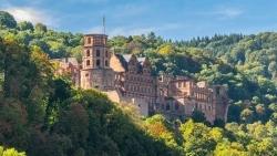 Im Heidelberger Schloss: Ninetynine unterstützt Martin Scharff's Gourmet Varieté