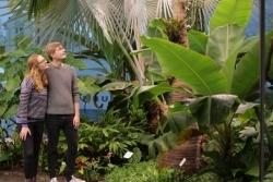 CO2-Reduzierung: Schokoladenmuseum Köln wird ab sofort klimaneutral betrieben