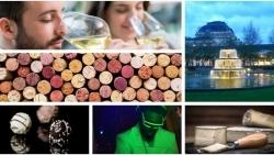 Genusspremiere: Neue Weinmesse startet in Wiesbaden