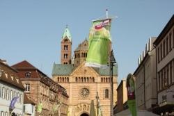 Speyer: Kartenvorverkauf für Wein am Dom hat begonnen