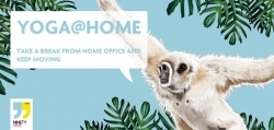 Ninetynine Hotels: Hotelkette präsentiert Yoga-Sessions fürs Homeoffice