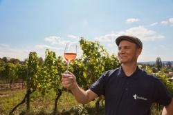 Sachsen: Winzer laden zum Sommer der offenen Weingüter