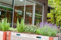 München: Marché Mövenpick eröffnet Marktplatzrestaurant im Tierpark Hellabrunn