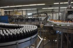 Weniger Plastikmüll: Brauerei Gold Ochsen setzt auf Mehrwegflaschen