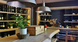 Bed & Wine: Weine entdecken in der Great Wine Capital Mainz