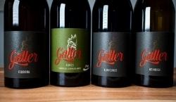 Falstaff PIWI Trophy: Platz 1 für Rotwein Kunigunde 2016 vom Weingut Galler