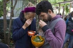 Slow Food: Changemaker für Ernährungspolitik gesucht