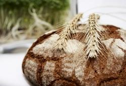 Brot und Bier: Slowfood lädt zur  Online-Verkostung