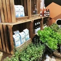 Berlin: Im Grünen Café ernten die Kunden selbst