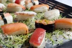 Sushi Aktion im Nippon Sun