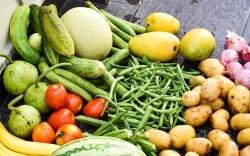 Tag der Lebensmittelvielfalt: Lebensmittelverband betont Wahlfreiheit