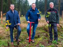 Aufforstungsaktion: Krombacher und Stadt Winterberg pflanzen Bäume