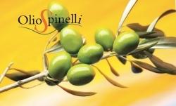 Olio Spinelli: italienisches Olivenöl von höchster Qualität