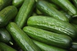 EHEC: Verzehrwarnung für Gurken, Tomaten und Salat aufgehoben